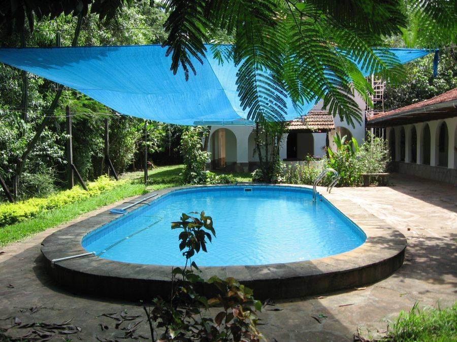 haus mit g stehaus und pool auf gepflegtem grundst ck. Black Bedroom Furniture Sets. Home Design Ideas
